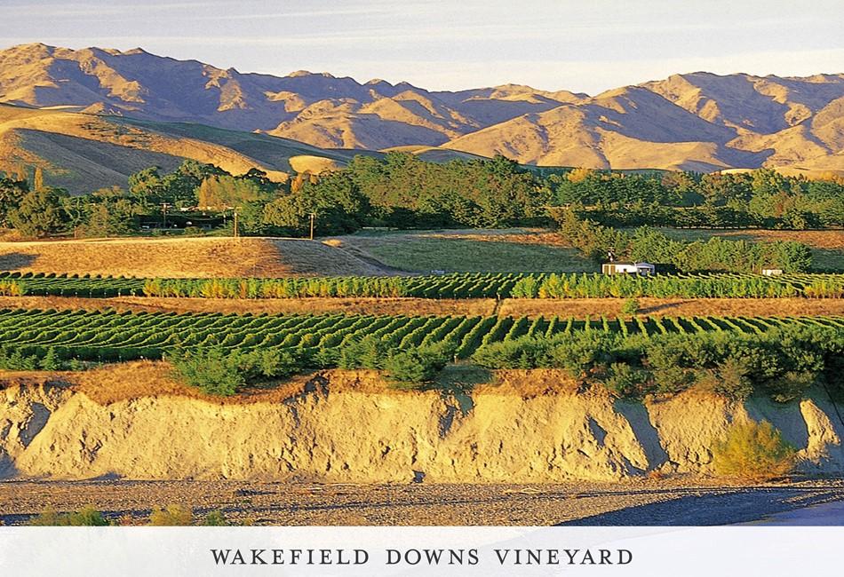 Wakefield Downs